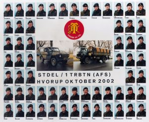 2002 STDEL - 1 TRBTN (AFS) HVORUP OKT 2002