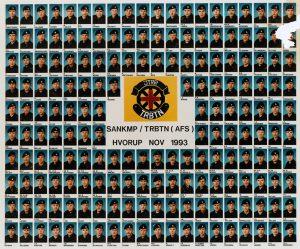 1993 SANKMP - TRBTN (AFS) HVORUP NOV 1993